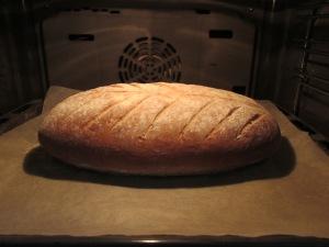 Basis recept voor witbrood