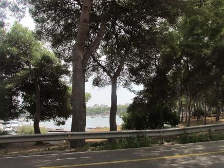 Creperia Gelateria Es Cucurutxo (Portocolom, Mallorca)