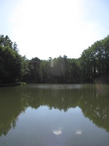 watermolen Uelsen