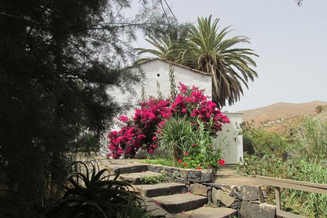 Leuke plaatsen op Fuerteventura: Betancuria